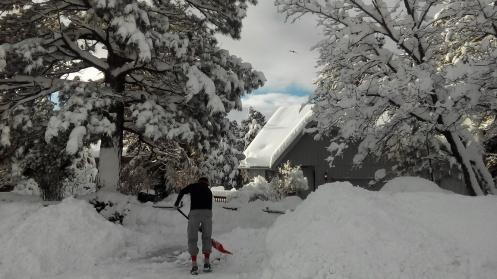 sneeuw-4-klein